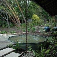 The newly planted patio and water feature, Bainbridge Island